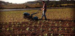 Pequenos Investimentos Nas Explorações Agrícolas
