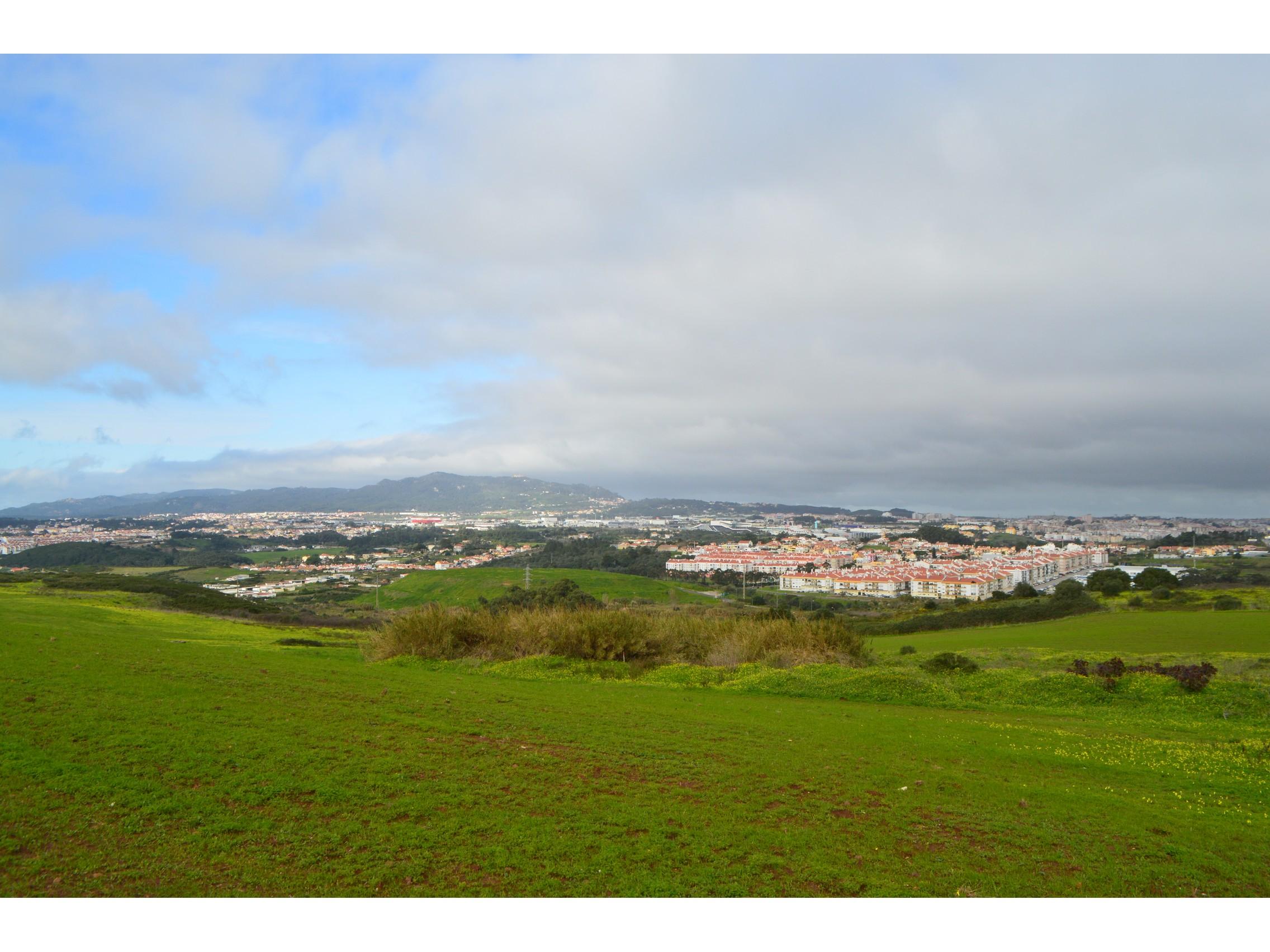 Publicado o Regulamento Municipal de Disponibilização de Terrenos para Utilização Agrícola, Florestal ou Silvopastoril de Sintra