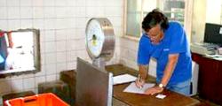 Criação De Emprego (SI2E) – Zonas Costeiras