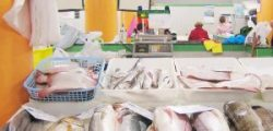 Melhoria Dos Circuitos Curtos De Bens Alimentares E Mercados Locais, No âmbito Do Mar