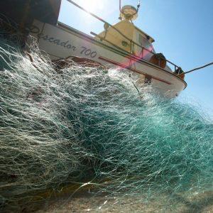 Reforço Da Competitividade Da Pesca